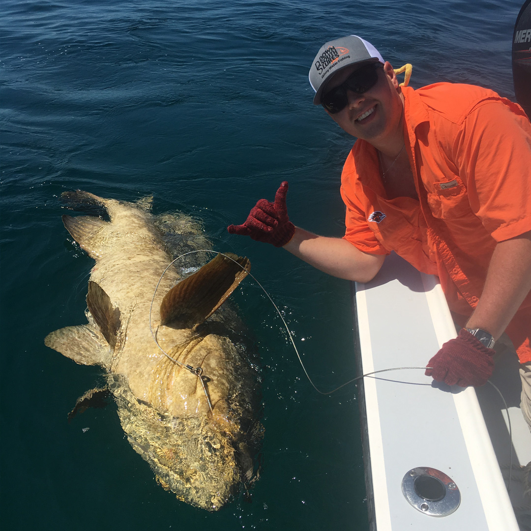 handlined_goliath_grouper