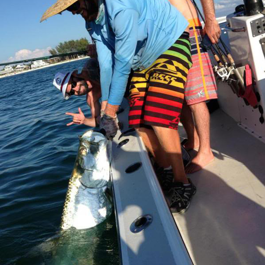 These clients went from almost no experience, to bringing up this great Tarpons on their charter.