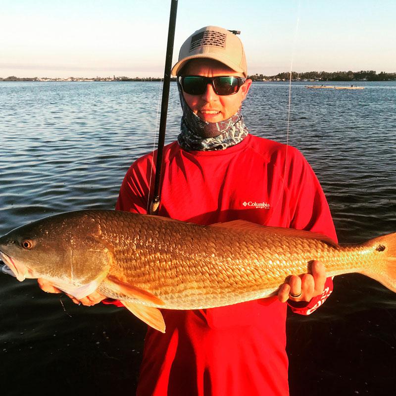 Redfish (Sciaenops ocellatus)