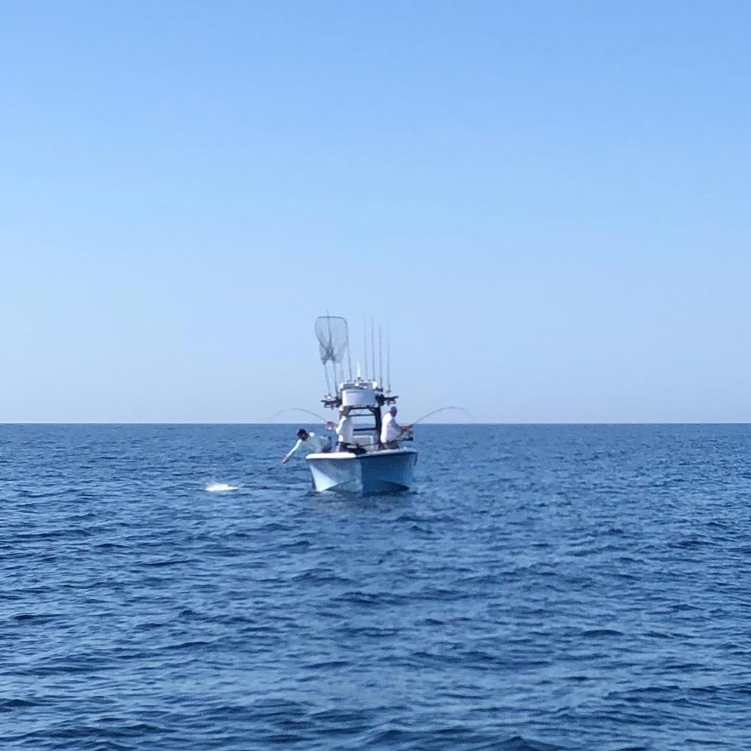 Captain Jason Stock Offshore Fishing Charters